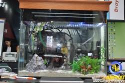 APC Aquarium PC For Gamer - Bộ máy tính Bể cá cho Game Thủ