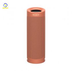 Loa Bluetooth SONY SRS-XB23/RC E