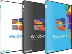 Windows 8.1 Pro 64 bit OEM